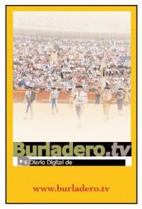 Banner burladero
