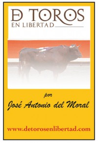 Banner de Toros en libertad