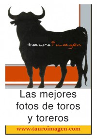 Banner tauroimagen