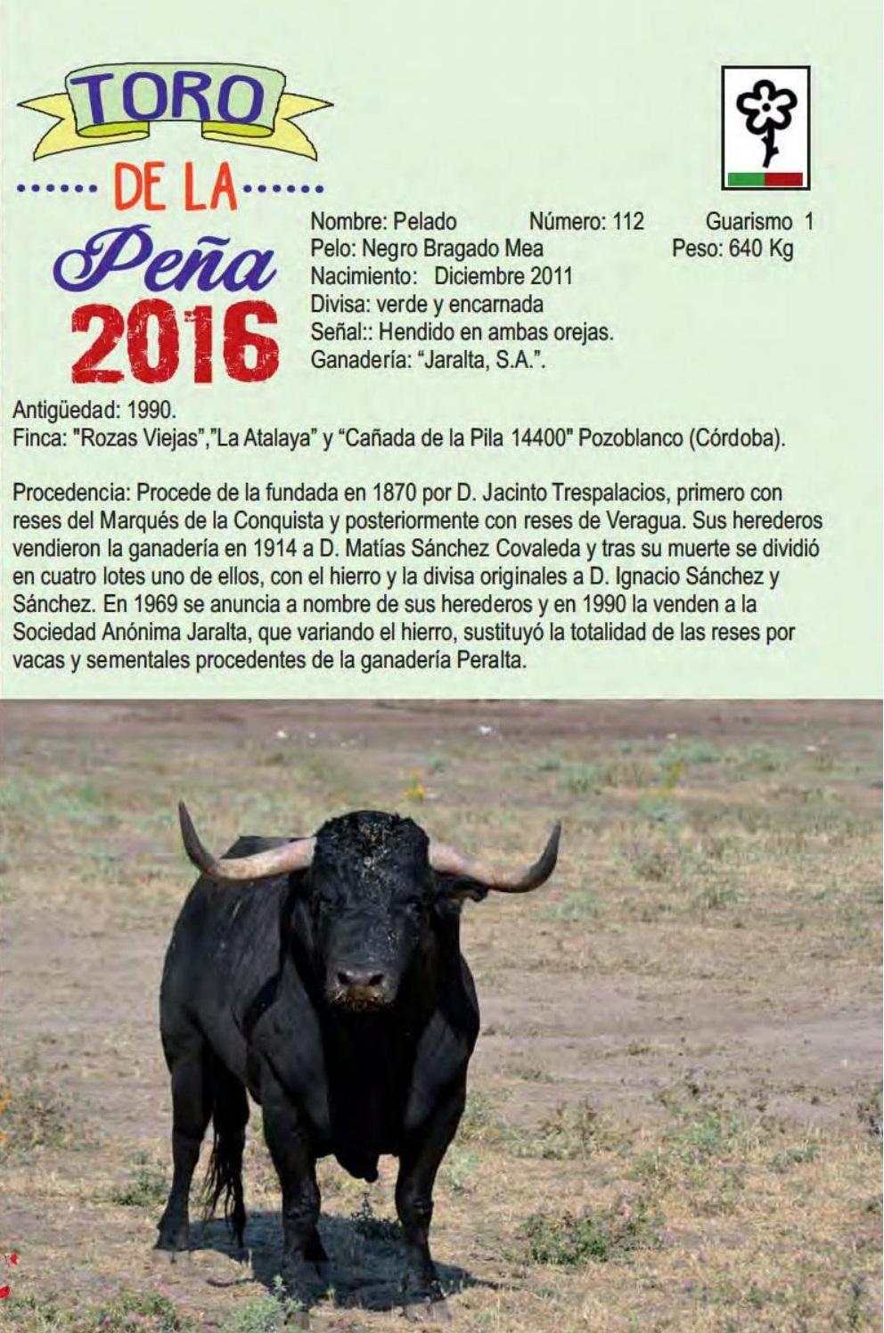 El Toro De La Peña Se Despeña En Tordesillas Contra La Vega Por Ricardo Díaz Manresa Avance Taurino