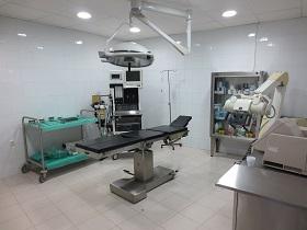 Resultado de imagen de Sociedad Española de Cirugía Taurina